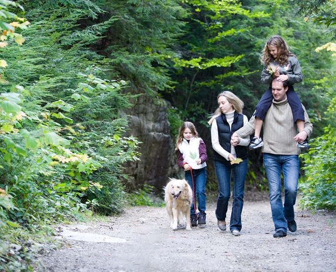 Dog walking family in the Lake District