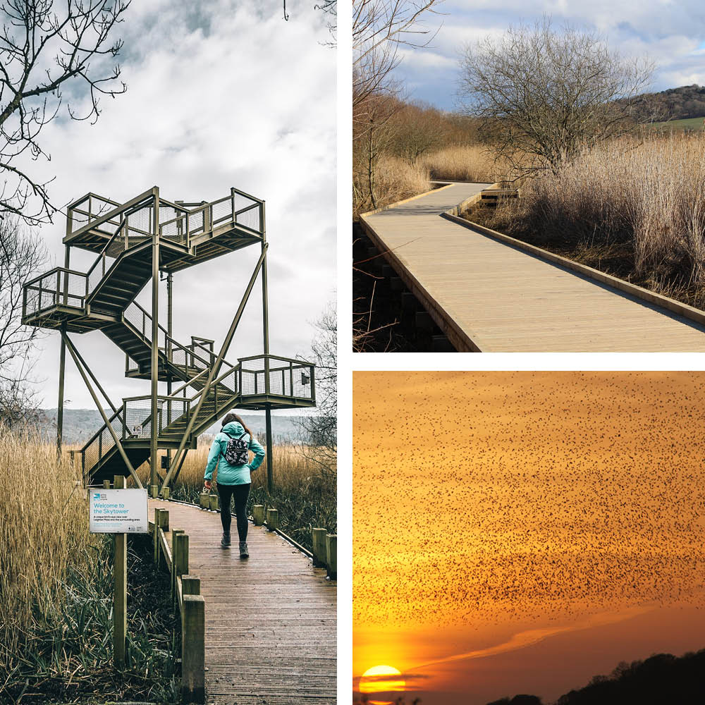 RSPB Leighton Moss | Discover Lancashire from Lancaster House Hotel